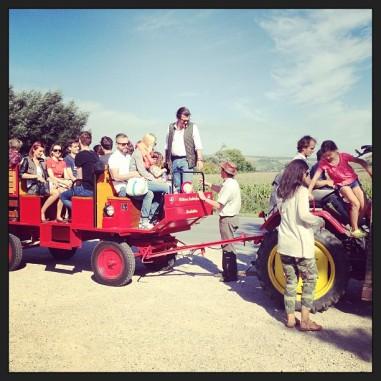 mim traktor über die weinviertler felder. pic by @coolhunterin