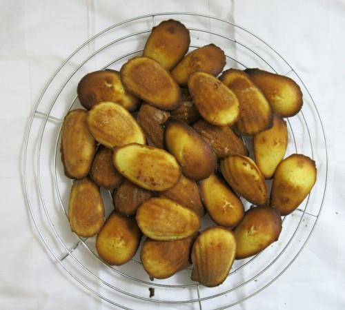 madeleines3