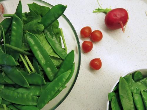 fisolen-schoten-salat