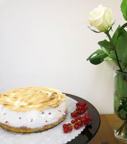 ribiselschaumkuchen-5